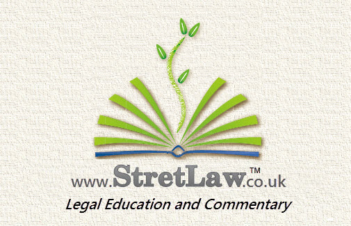 The Many Uses of Snagit: Legal Education and Commentary