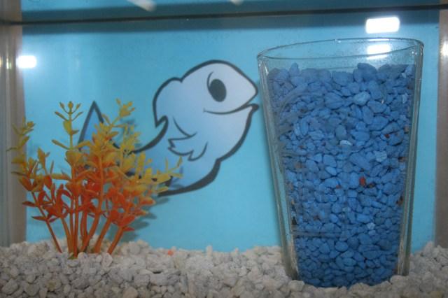 Aquarium Decoration Ideas & DIY Fish Bowls   That Fish Blog