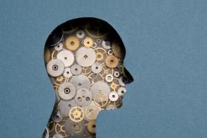 Estudos de neurociência ajudam à educação