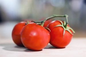 funiber-tomate-bioplástico