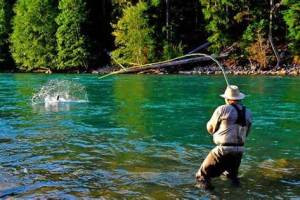 How To Cast In Fly Fishing