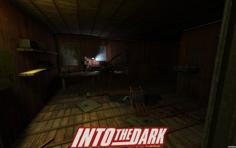 Into The Dark (9)