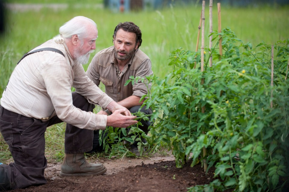 walking-dead-season-4-episode-1-andrew-lincoln-scott-wilson