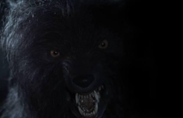 Autumn Moon werewolf