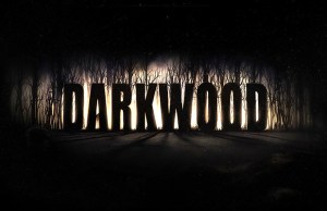 Darkwood4_1
