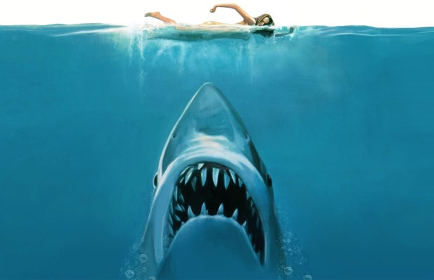 jaws remake