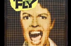 theflybanner