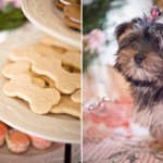 Bones & Cookies-Sounds Like A Doggie Party!