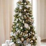 Christmas Countdown: Day 1-Christmas Trees