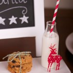 Day 8- Holiday Favorites-Cookies For Santa