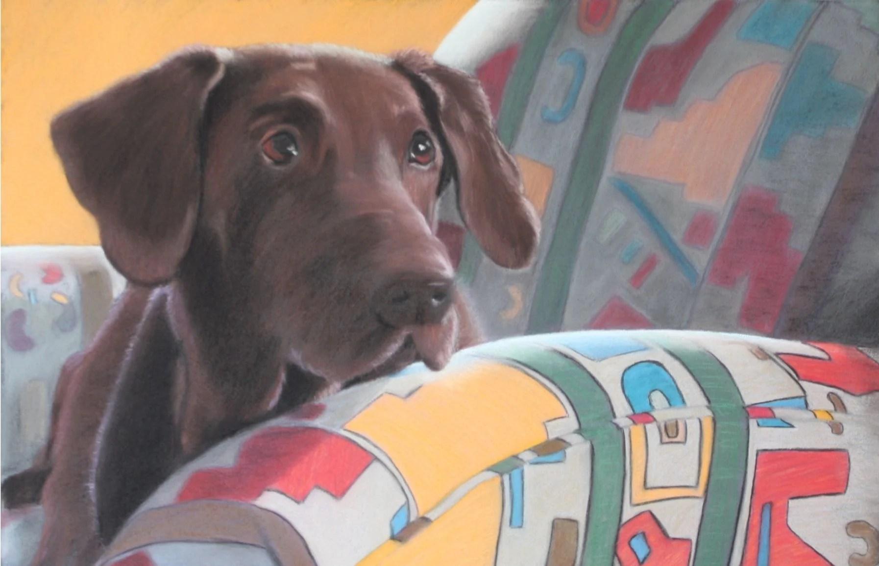 Fullsize Of Aaron Rodgers Dog
