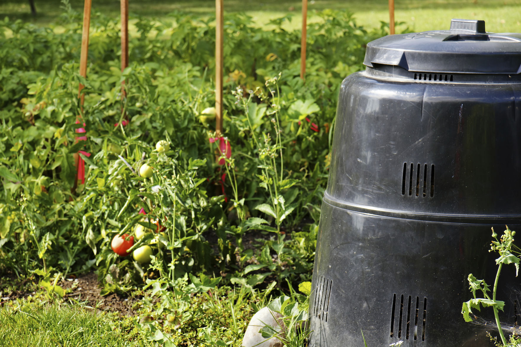 Sunshiny Compost Proposed County Program Seeks To Complement Backyard Composting Ramsey County Compost Midway Hours Ramsey County Compost Site Pierce Butler houzz-02 Ramsey County Compost