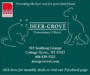 Deer Grove Vet (IN STORY) - 300 x 250 - CD HI