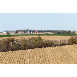 Small Crop Of Cheapest Land In America