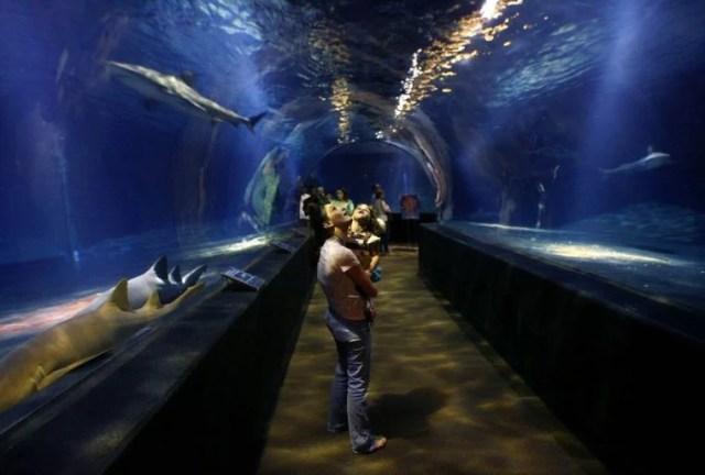 Aquarium gets dedicated funding source, Jenks officials say   Tulsa