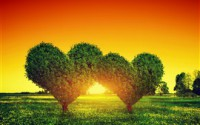 Two-love-hearts-trees-grass-sunset_s