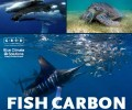 Fish Carbon Resources – Invitation to Share