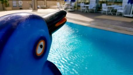 antalya yüzme havuzu konyaaltı sahilde oteller blue garden hotel (19)