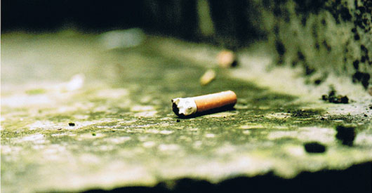 Littered cigarette butts kill fish