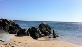 cabo pulmo marine conservation