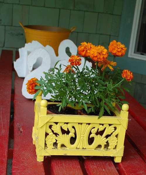 yellow-planter1