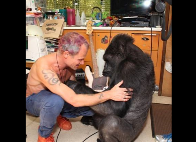 Flea and Koko Photo by unknown.