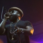 the roots 6