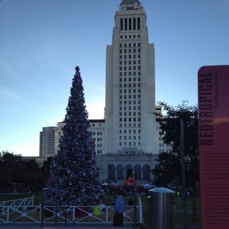 DTLA Turkey Trot Race Recap, city hall, grand park