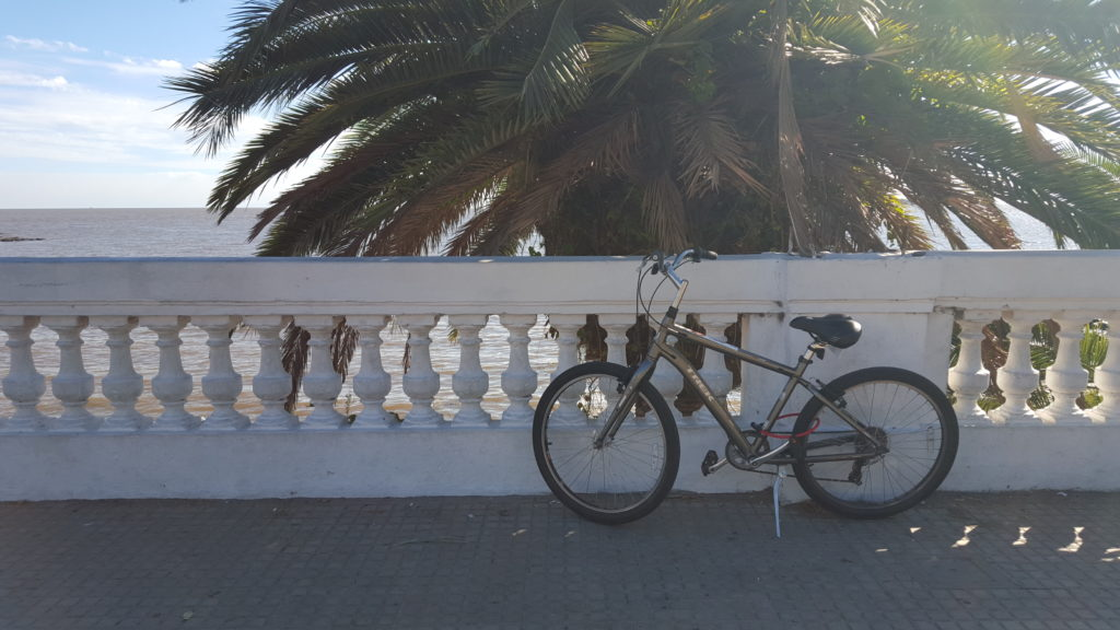 When you visit Buenos Aires, you can go to Colones and rent a bike.