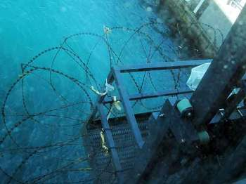 Razor wire across the stern