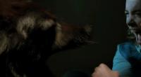 Cães assassinos perseguem família no filme de estreia de Nick Robertson, que será distribuído pela IFC Midnight