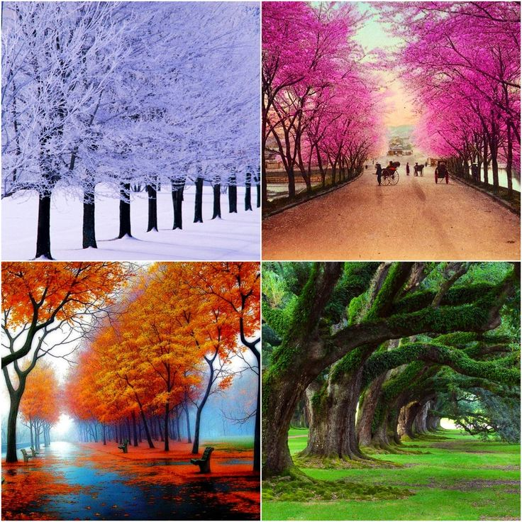 LONG POEMS   The 4 seasons of life  The Life of Love XVI by Khalil     LONG POEMS   The 4 seasons of life  The Life of Love XVI by Khalil Gibran      bodyandsoulnourishmentblog