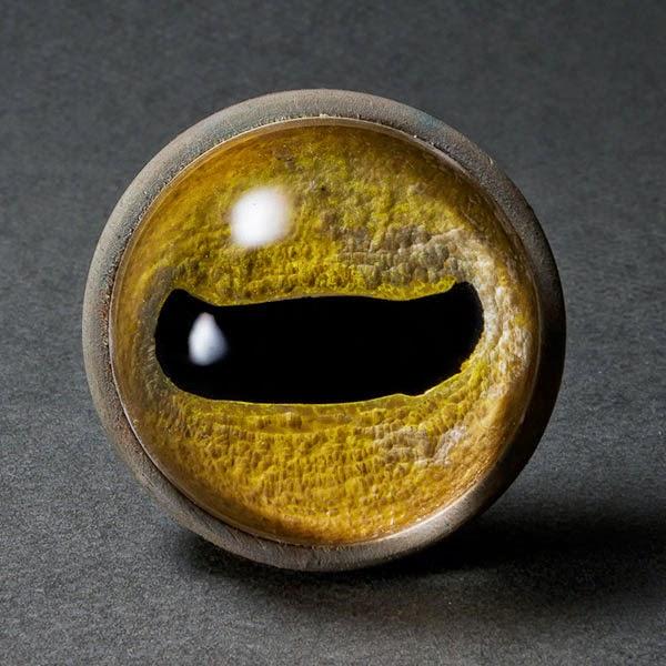 stefano-prina-eyes-04
