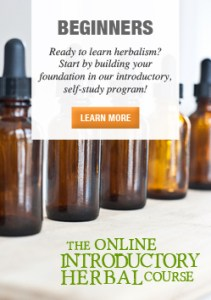Join-us-for-the-Online-Introductory-Herbal-Course-250-2-SIDEBAR
