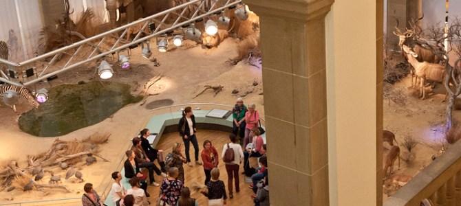 Marktplatz in der Savannen-Ausstellung