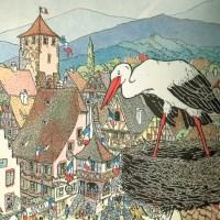 Cigogne, ma belle reine d'Alsace !