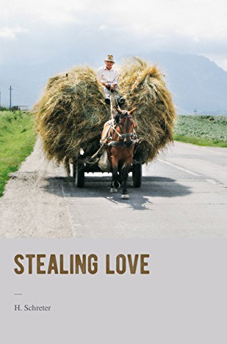 Book Cover: Stealing Love by H. Schreter