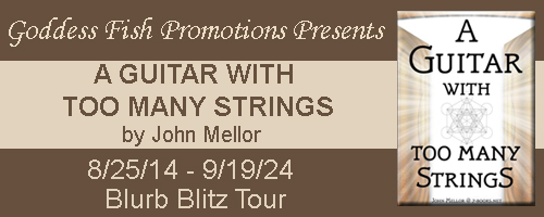BBT A Guitar With Too Many Strings Tour Banner copy
