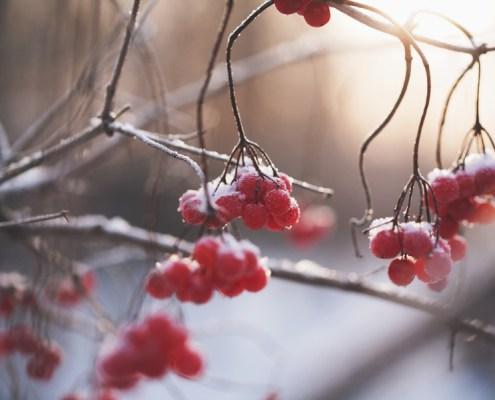 wintertime-rhymes
