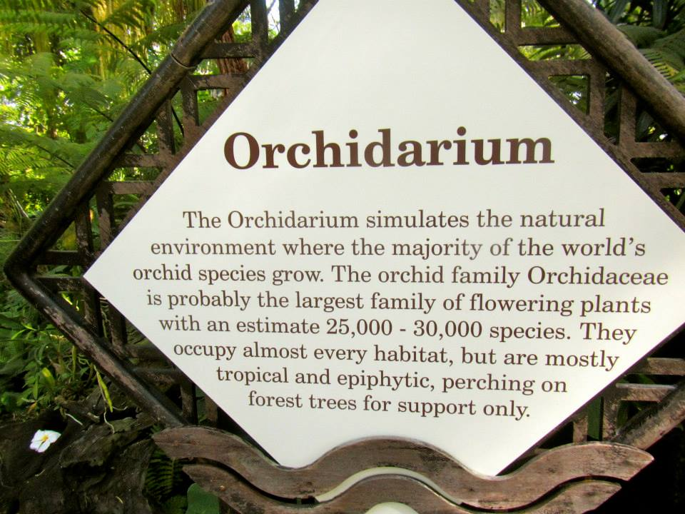The Orchidarium is the largest family of flowering plants
