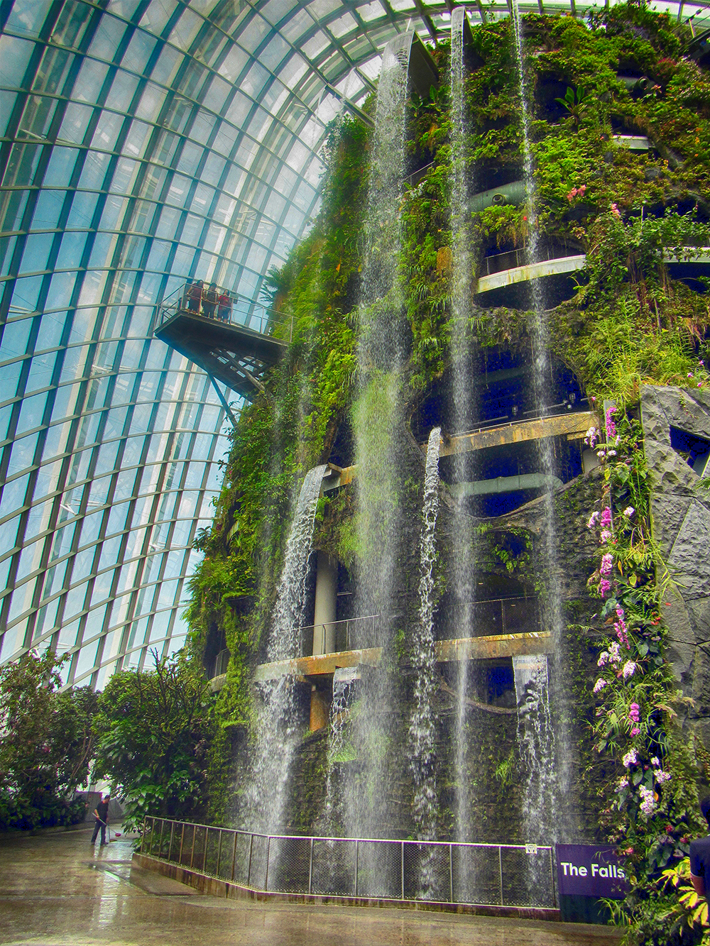 This waterfall in the Cloud Forest in Singapore is the tallest indoor waterfall in the world