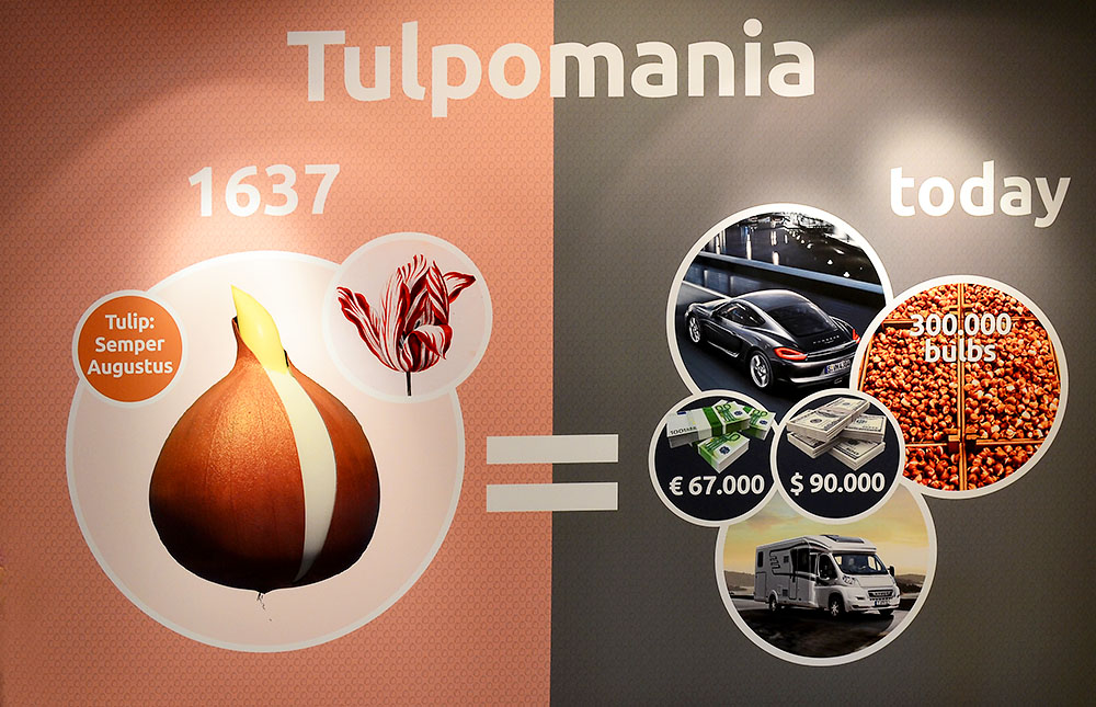 Tulipmania today