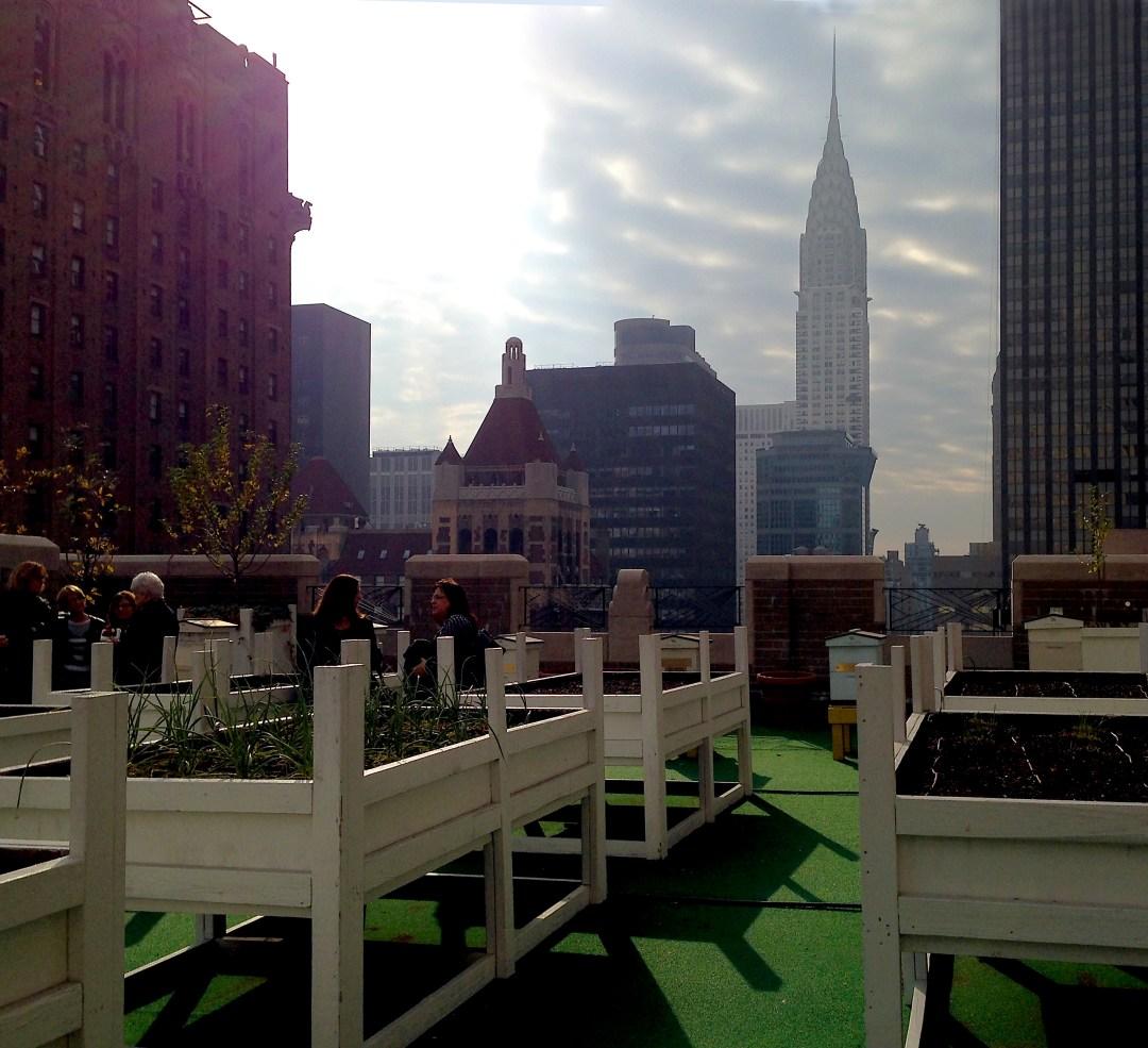 Herb Garden on roof of Waldorf Astoria Hotel
