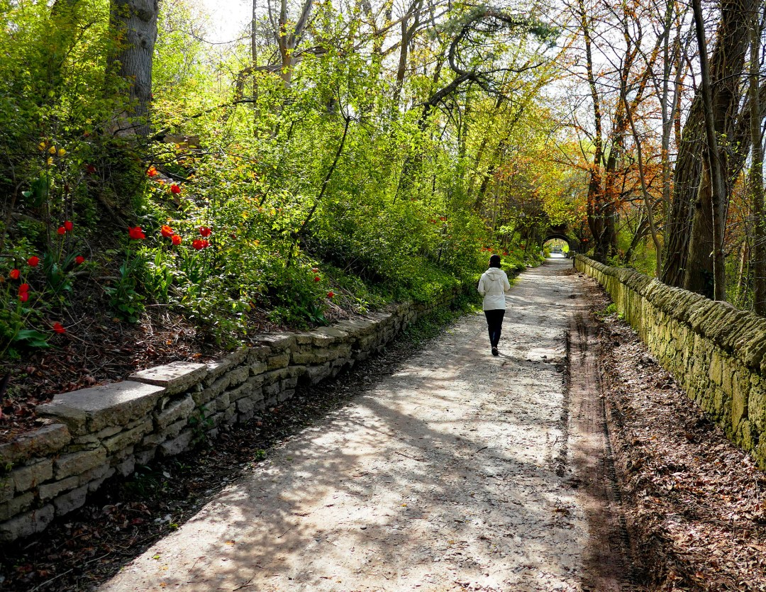 Wooded path in Riverdale Farm in Cabbagetown for boomervoice