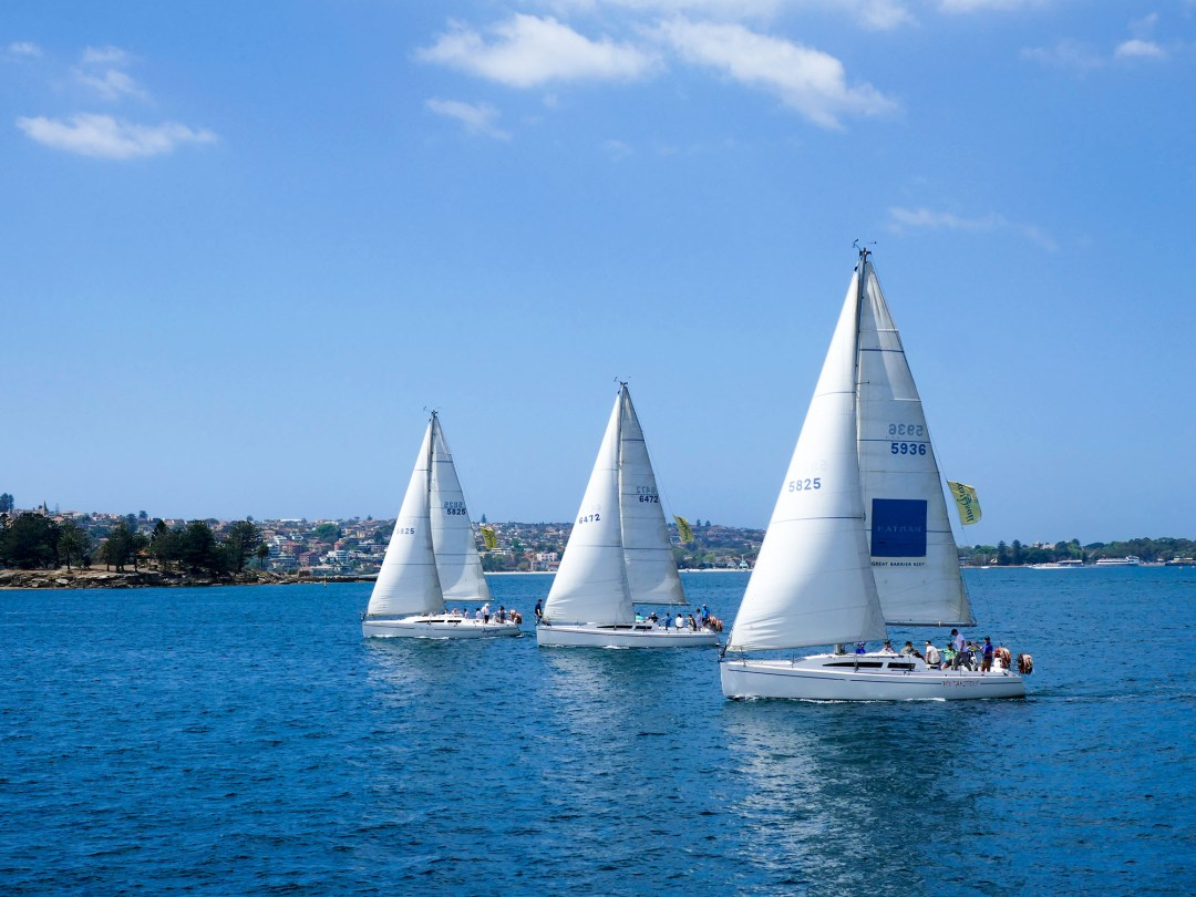 Sailboats in Sydney Harbour for boomervoice