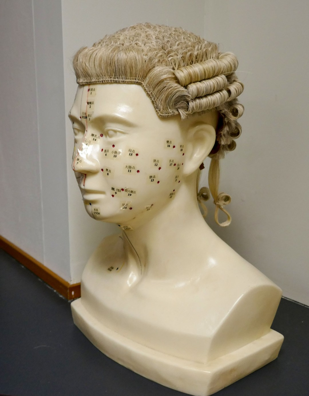 Barrister's Wig stand