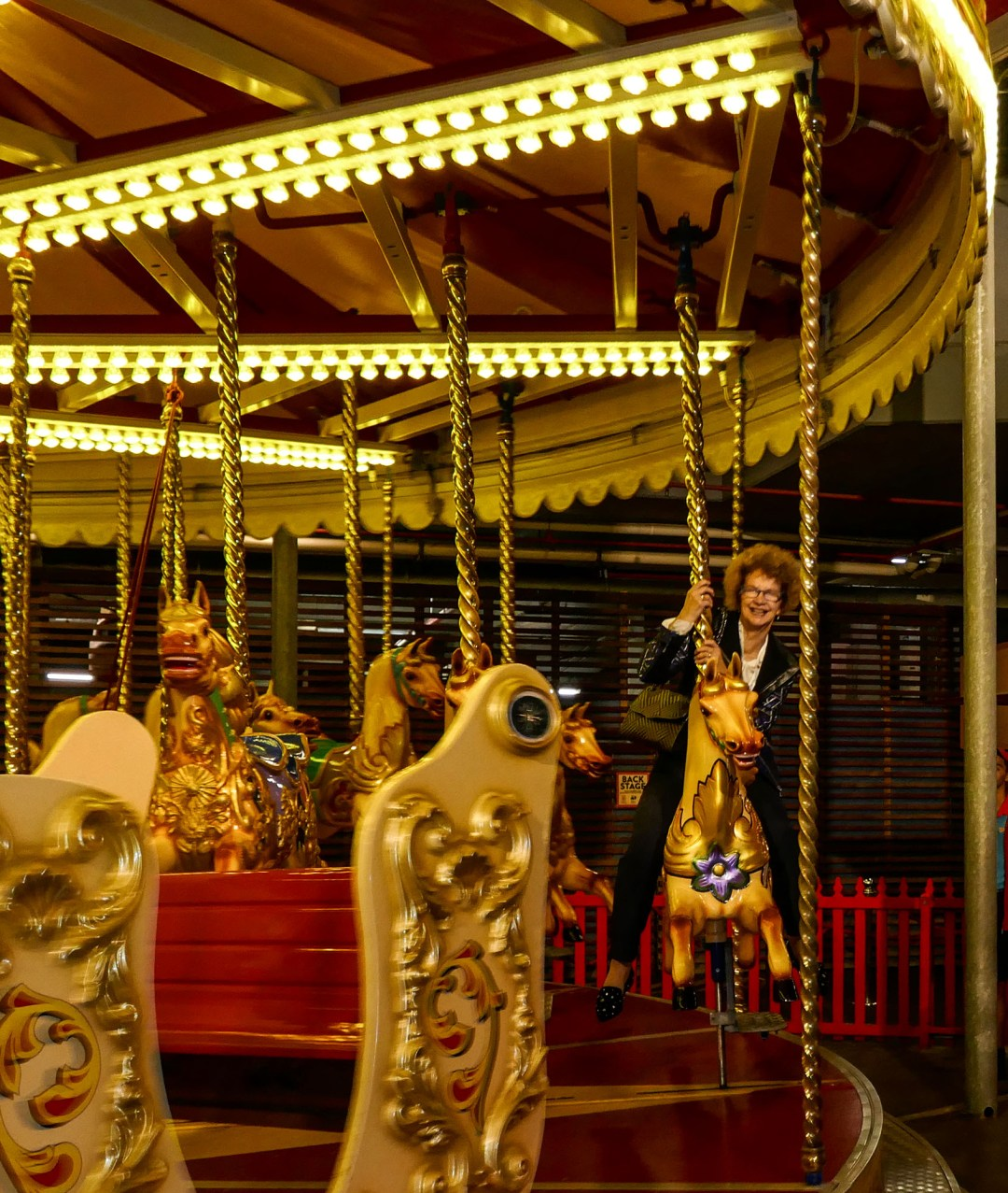 Merry go round at Luna Park at the International Bar Association annual conference in Sydney for boomervoice