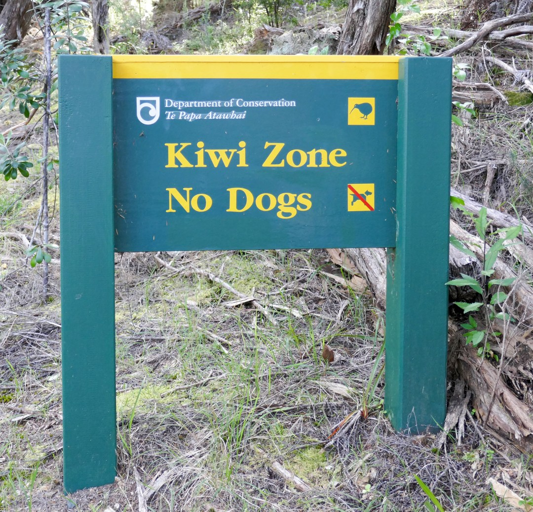 Kiwi zone in Russell for boomervoice