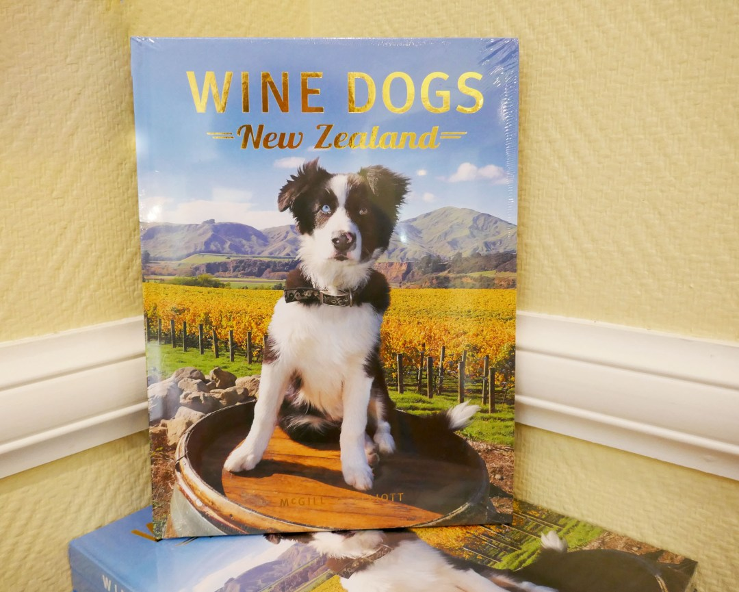 Wine Dogs in Napier New Zealand for boomervoice