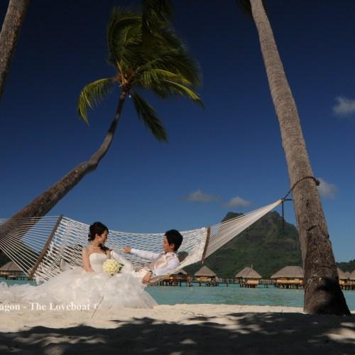 Wedding Pictures+Videos (7)